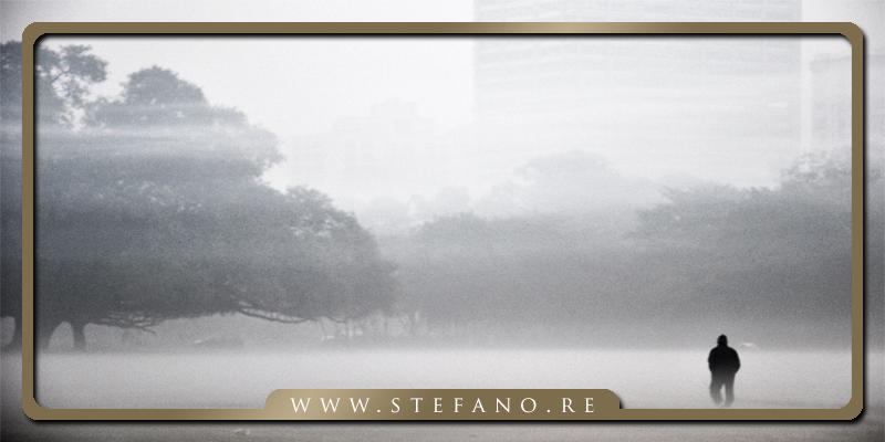 La nebbia